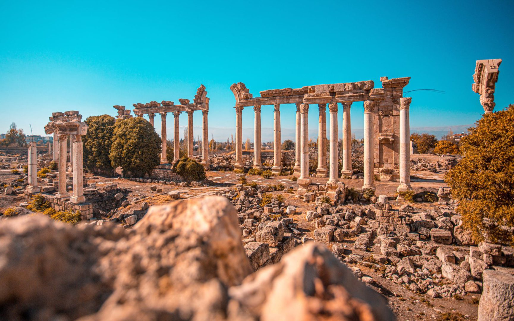 Leren voor Latijn: 5 tips en tricks